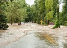 Flooding, flood insurance